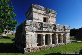 Coba, Mexico #Coba #Mexico #Yukatan #Maya