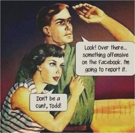 Trolls, Facebook, Cunt