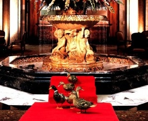 The Peabody Hotel, Little Rock, Arkansas. The ducks rule this hotel, and they even do a little march into the fountain!