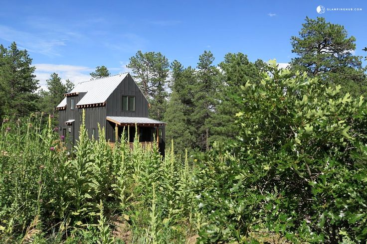 Gorgeous and Modern Cabin Rental in the Hills of Beulah, Colorado