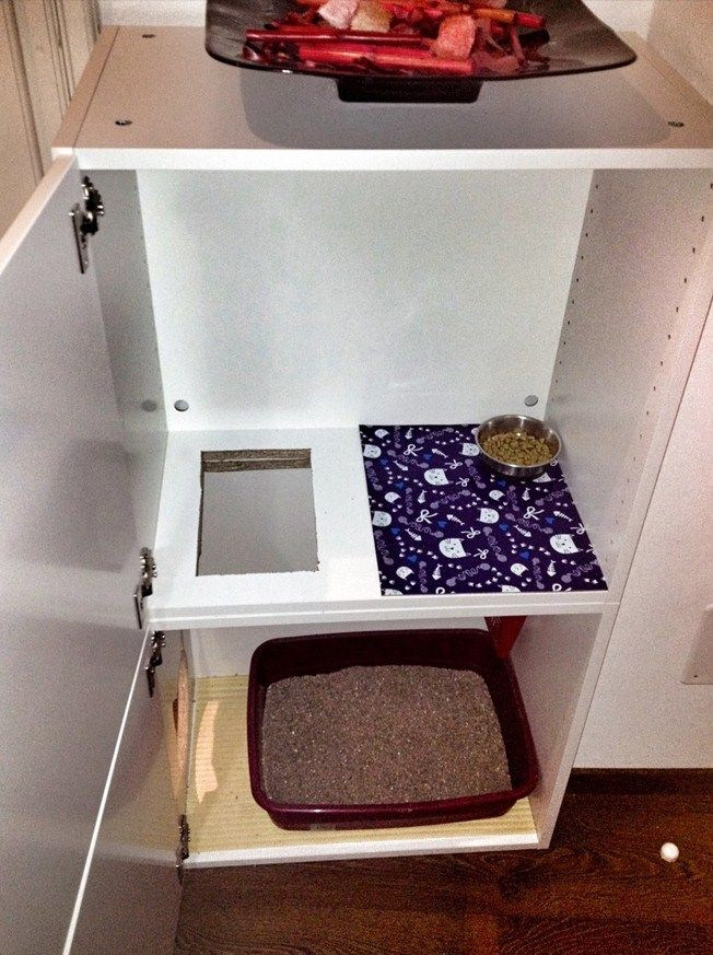 Inside View Of The Cat Litter Etc Shelf But I Dont Think