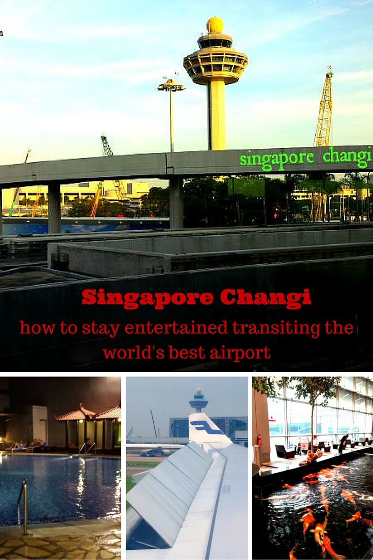Singapore Changi airport is the ultimate family travel airport to transit through. Lots of features and attractions to keep kids amused while you wait for your next flight