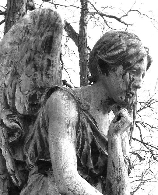 It was a beautifully warm, late fall day yesterday. We spent part of the day in Forest Home Cemetery searching for angel statues to photog...