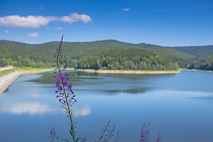 Sösetalsperre bei Osterode am Harz - fotografiert vom wunderschönen Wanderweg am Ufer der Talsperre