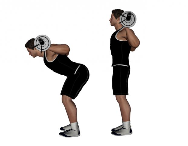 Good Morning Gym : Barbell good morning lift top lower back exercises