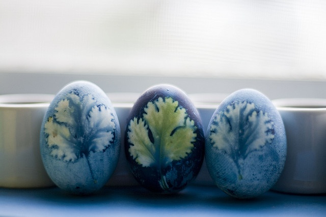 leaves -- cabbage-dyed easter eggs (works on other surfaces too?)