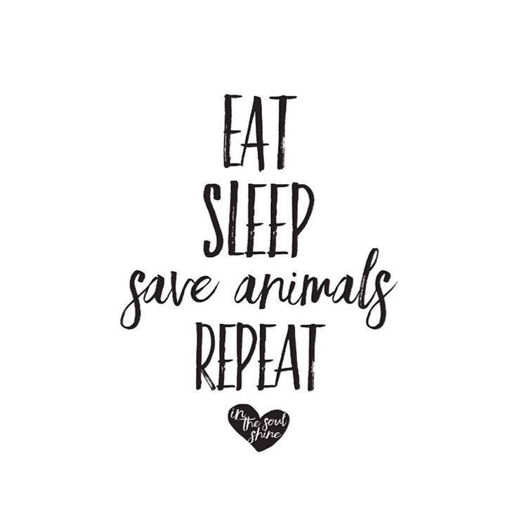 Eat.Sleep. Save Animals. Live #vegan Repeat. Repeat. Repeat - Daily EM-C