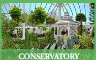 Key West Butterfly & Nature Conservatory. Visit this tranquil paradise on your next trip to Key West.