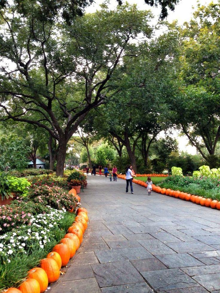 Photos At Dallas Arboretum And Botanical Garden Lakewood Dallas Tx How Does Your Garden