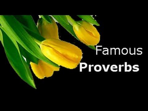 Collection of famous proverb Haste makes waste A stitch in time saves nine Ignorance is bliss Mustn't cry over spilled milk. You can catch more flies with honey than you can with vinegar. read more below #proverb