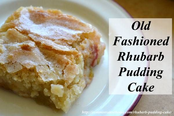 Old Fashioned Pudding Cake