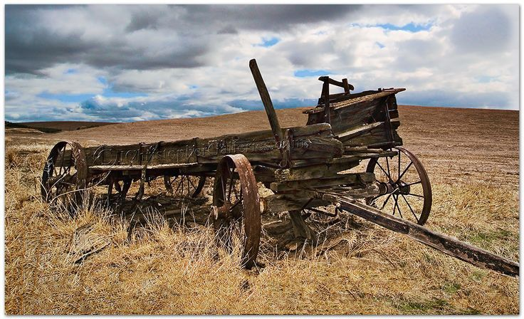 25 Best Wheel Barrels Wagons Images On Pinterest Old