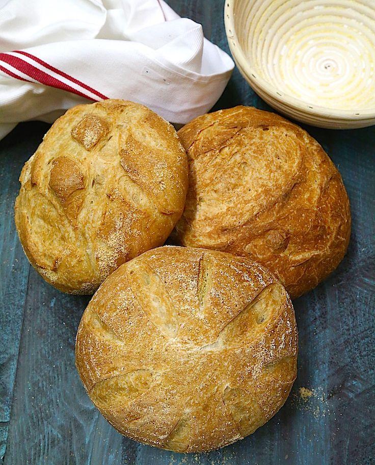 A Traditional San Francisco Sourdough Bread Recipe {Organic and GMO-Free} - Whole Lifestyle Nutrition