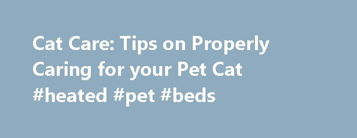 Cat Care: Tips on Properly Caring for your Pet Cat #heated #pet #beds http://pet.remmont.com/cat-care-tips-on-properly-caring-for-your-pet-cat-heated-pet-beds/  Cat Care Tips Cats are one of the most popular pets for many pet lovers. This may be due to their playful personalities, affectionate behavior or adorable appearance. However, aside from being cute, cats do require proper care in order to stay healthy and content. Here are some general cat care tips that will help you learn how to…