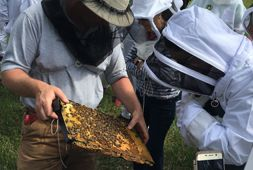 Huge Inventory Of Quality Beekeeping Supplies and Equipment. Shop Bee Supplies Online Today!