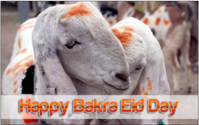 online bakra eid wallpapers