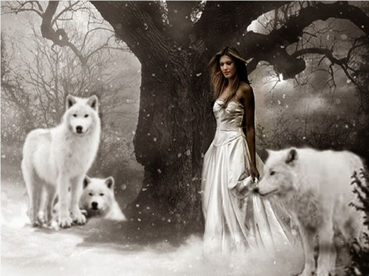 THE BROTHERHOOD OF THE WOLF - Community - Google+
