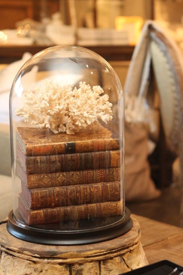 old books, sea element and a glass cloche