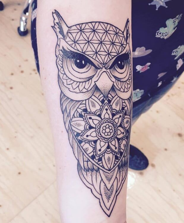 12 Best Mandala Owl Tattoo Designs Petpress In 2020 Owl Tattoo Design Cute Owl Tattoo Owl Tattoo