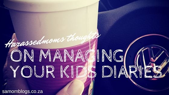 HarassedMom Thoughts on Managing your Kids Diaries