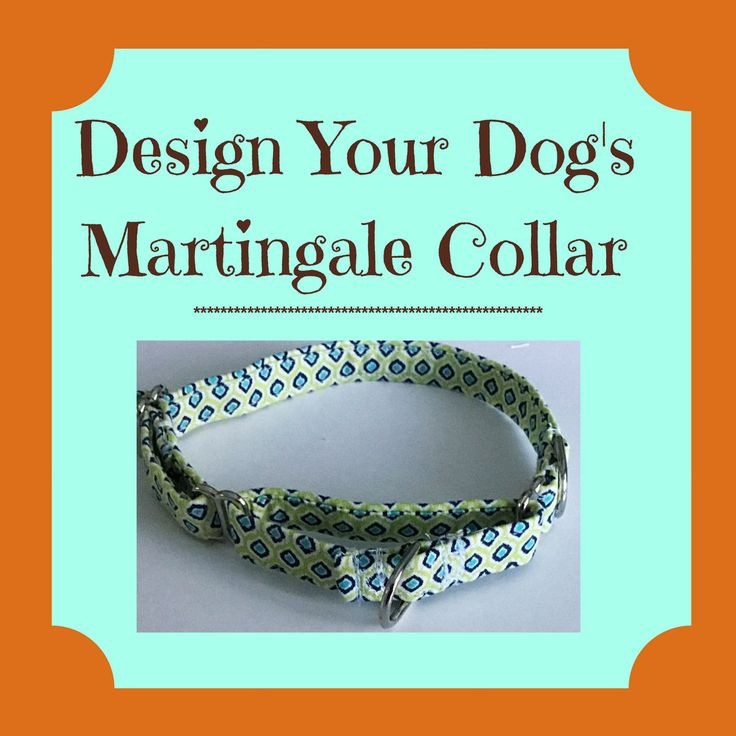 Design Your Dog's Martingale Collar by UppityPuppitys on Etsy