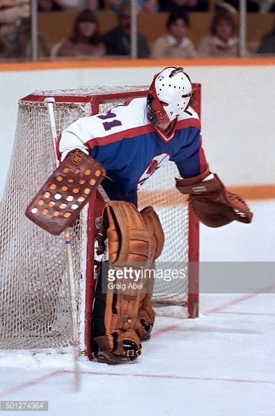 ed-staniowski-of-the-winnipeg-jets-prepares-for-a-shot-against-the-picture-id501274364 (393×594)