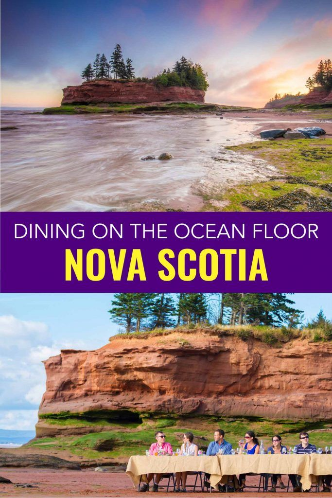 An Epic Nova Scotia Experience Each Summer Flying Apron Cookery