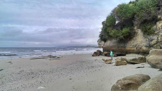 Fossil Bluff - Wynyard NW Tasmania - low tide only!