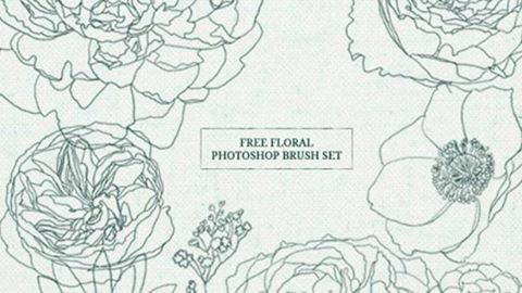 Best Photoshop Brush – Free Floral Brush Set http://masbadar.com/28-brush-photoshop-terbaik/