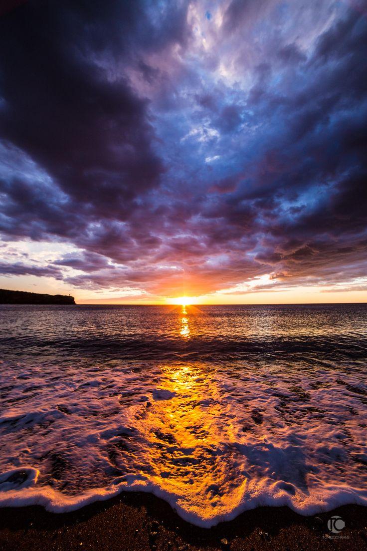 13 best Kimberly Ropson - Art images on Pinterest | Newfoundland ...