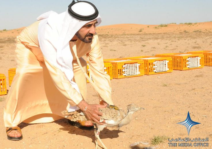 2010  His Highness Sheikh Mohammed bin Rashid Al Maktoum has set free 170 Asian captive-bred Houbara bustards at the Al Maha Desert Conservatory in Dubai. The move comes in line with President His Highness Sheikh Khalifa bin Zayed Al Nahyan's policy to boost the numbers of houbaras in the region, while relocating the endangered birds across the UAE and the Arabian Peninsula. The release reflects Sheikh Mohammed's deep interest in important environmental issues.