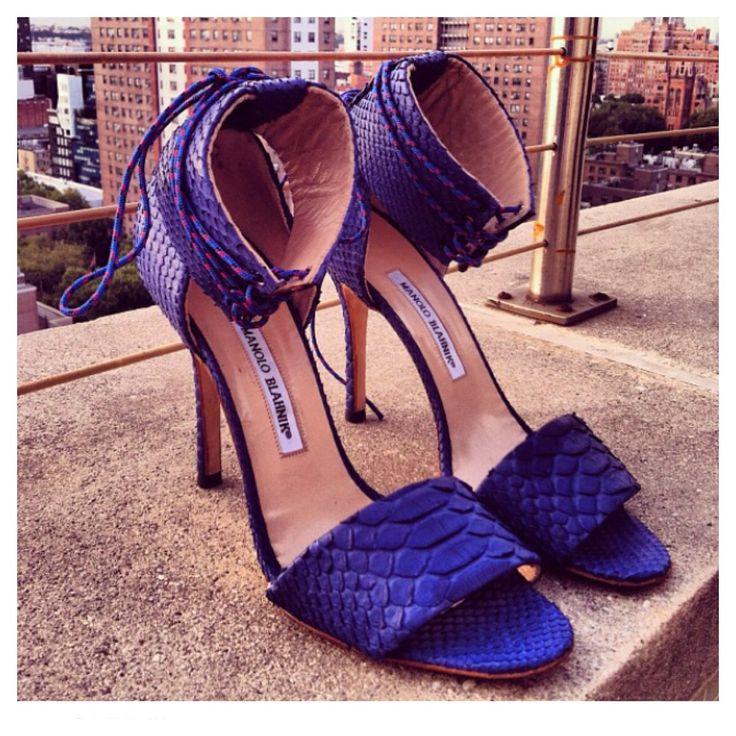 manolo blahnik shoes for adam lippes
