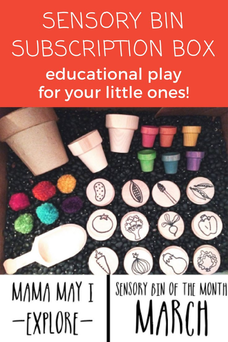 Educational toys that your kids will LOVE. These sensory bin subscription boxes are so cool! Handmade wooden toys that will keep your kids busy and learning while exploring through natural play. #learning #toys #sensory
