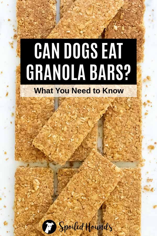 Can Dogs Eat Granola : granola, Granola?, About, Granola, Eating,, Nutrition