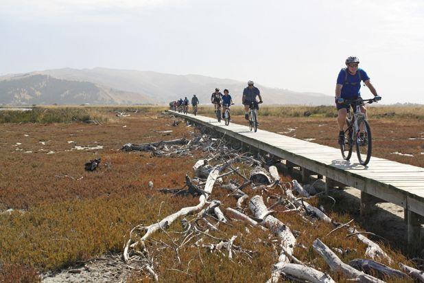 Cycling on the marshes, Marlborough NZ