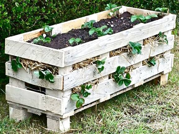Recycle Old Pallets Into A Garden Box.