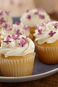 Fructose and gluten free recipes