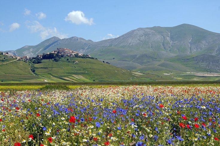 Castelluccio (Norcia) is a village in Umbria, in the Apennine Mountains of central Italy. Description from pinterest.com. I searched for this on bing.com/images