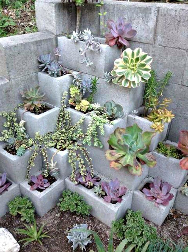 Cinder block succulent garden, would be great in the corner of my back yard retaining wall.