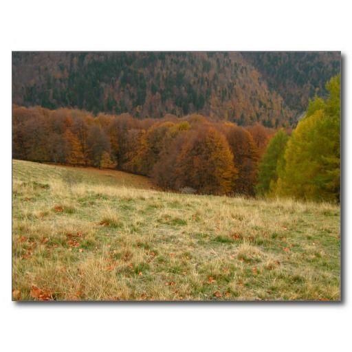 Autumn landscape post card