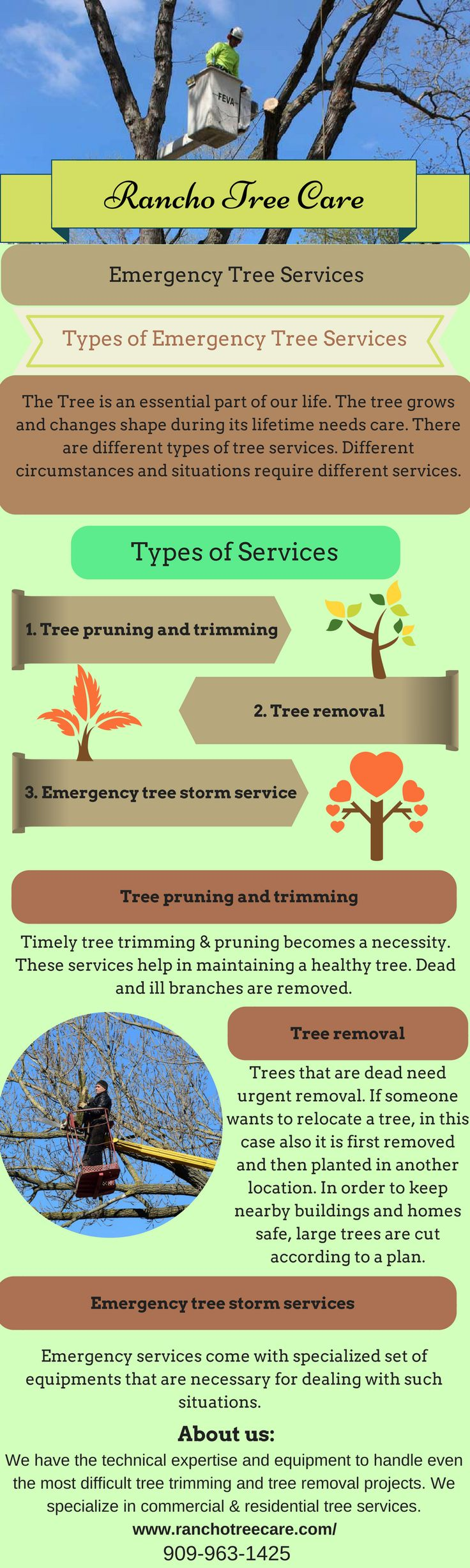 Need an emergency tree care service? Then, Rancho Tree care provides all types of emergency tree services like tree removal, tree trimming, pruning & many more. They have an expert who gives you complete solution and they provide services in Rancho Cucamonga, Claremont, Upland, Corona, Montclair within your budget. For more details you can visit at - http://ranchotreecare.com/