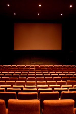 No matter what is going on in Life, I sit in one of these chairs & every thing goes away! I LOVE MOVIES!!!