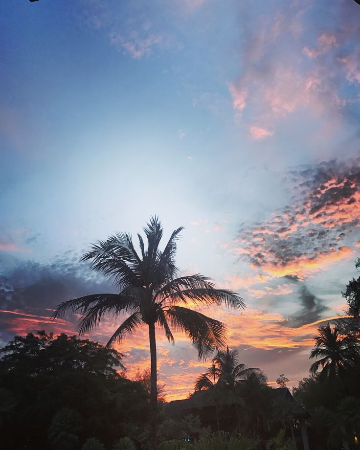 Good night #sunset #life