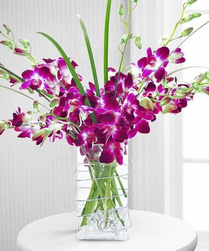 This long lasting arrangement of purple dendrobium orchids in an elegant rectangular vase is the perfect gift for any occasion.