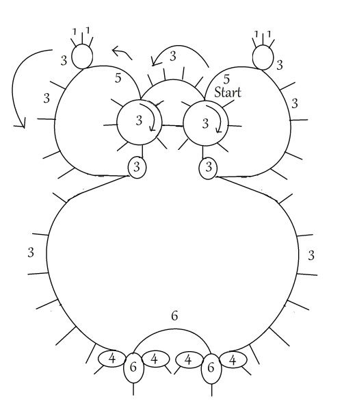 Pattern Diagram.