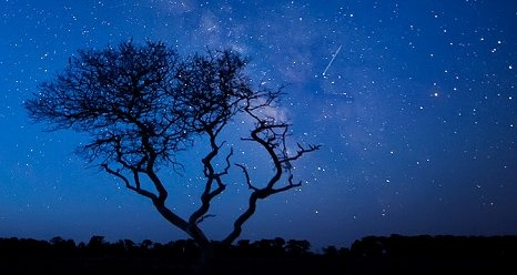 Lyrids Meteor Shower: 'Up All Night' With NASA.  Lyrids are pieces of debris from the periodic Comet C/1861 G1 Thatcher and have been observed for more than 2,600 years. In mid-April of each year, Earth runs into the stream of debris from the comet, which causes the Lyrid meteor shower.  In 2011 the bright moon overshadowed visibility for many meteor showers, but now Lady Luna has decided to share the stellar stage.