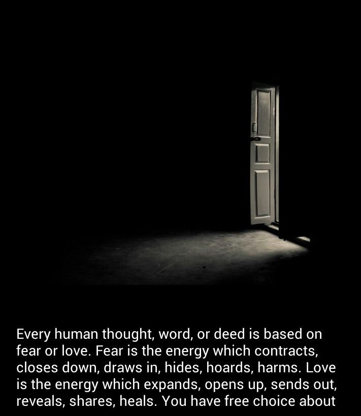 essay help for love vs fear
