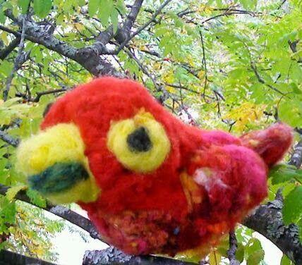 luonto taito työ: Puna ara etelä Amerikka luonnon lintujen elämä