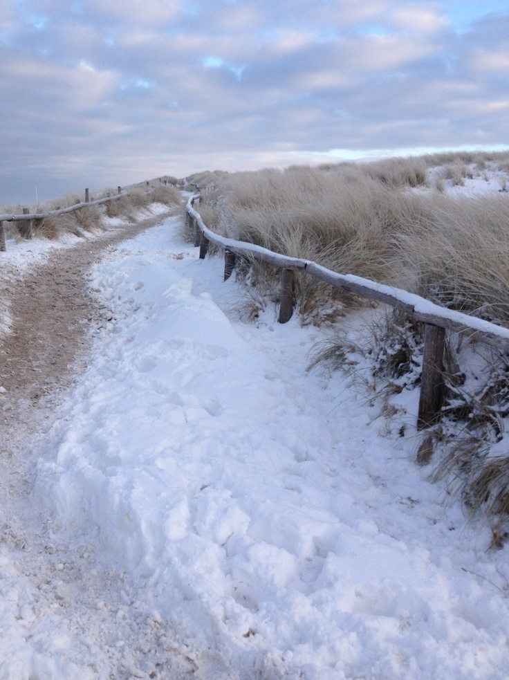 Winter in Holland, dunes Egmond aan Zee