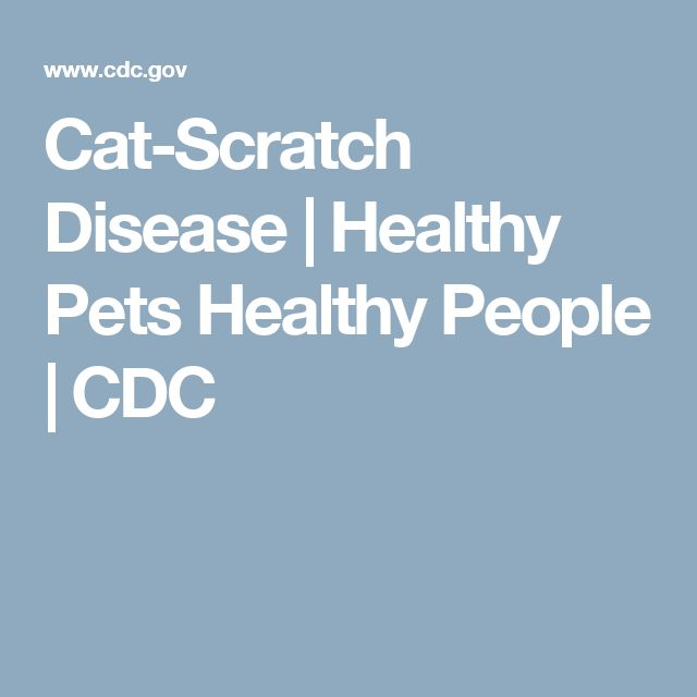 Cat-Scratch Disease      | Healthy Pets Healthy People | CDC
